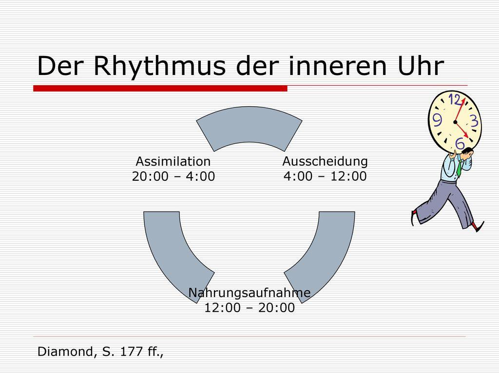 Der Rhythmus der inneren Uhr