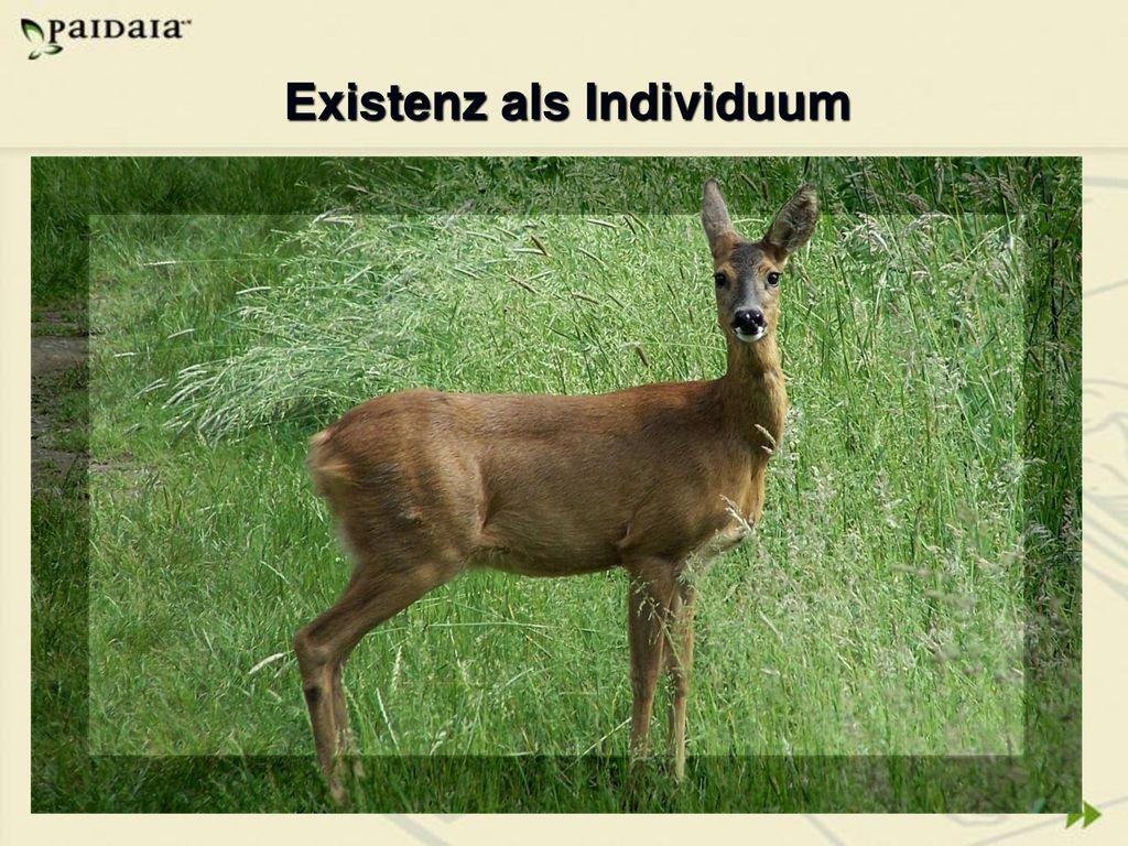 Existenz als Individuum