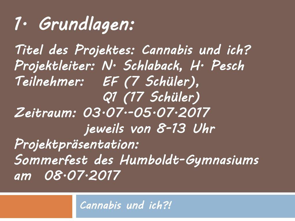 Grundlagen: Titel des Projektes: Cannabis und ich