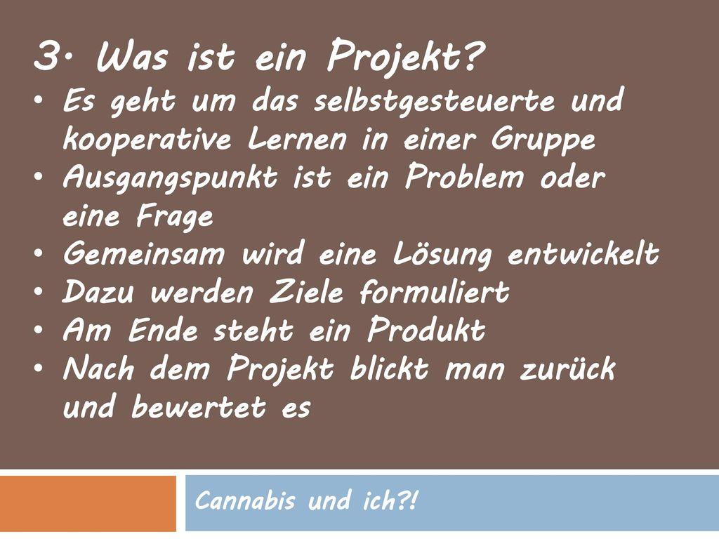 3. Was ist ein Projekt Es geht um das selbstgesteuerte und kooperative Lernen in einer Gruppe. Ausgangspunkt ist ein Problem oder eine Frage.