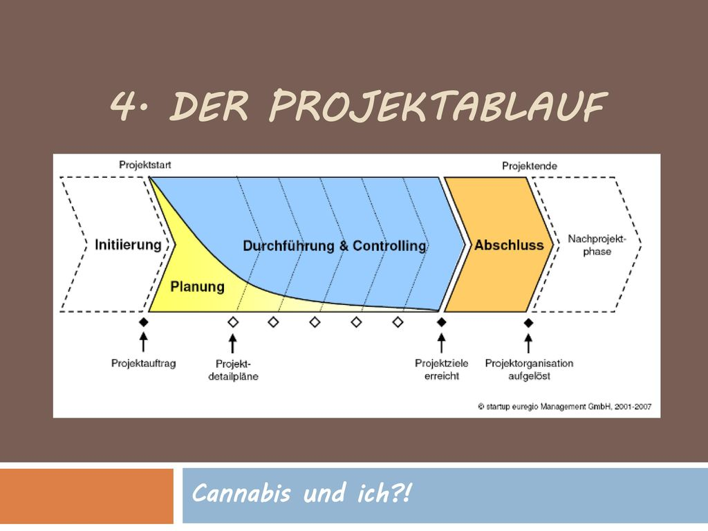 4. Der Projektablauf Cannabis und ich !