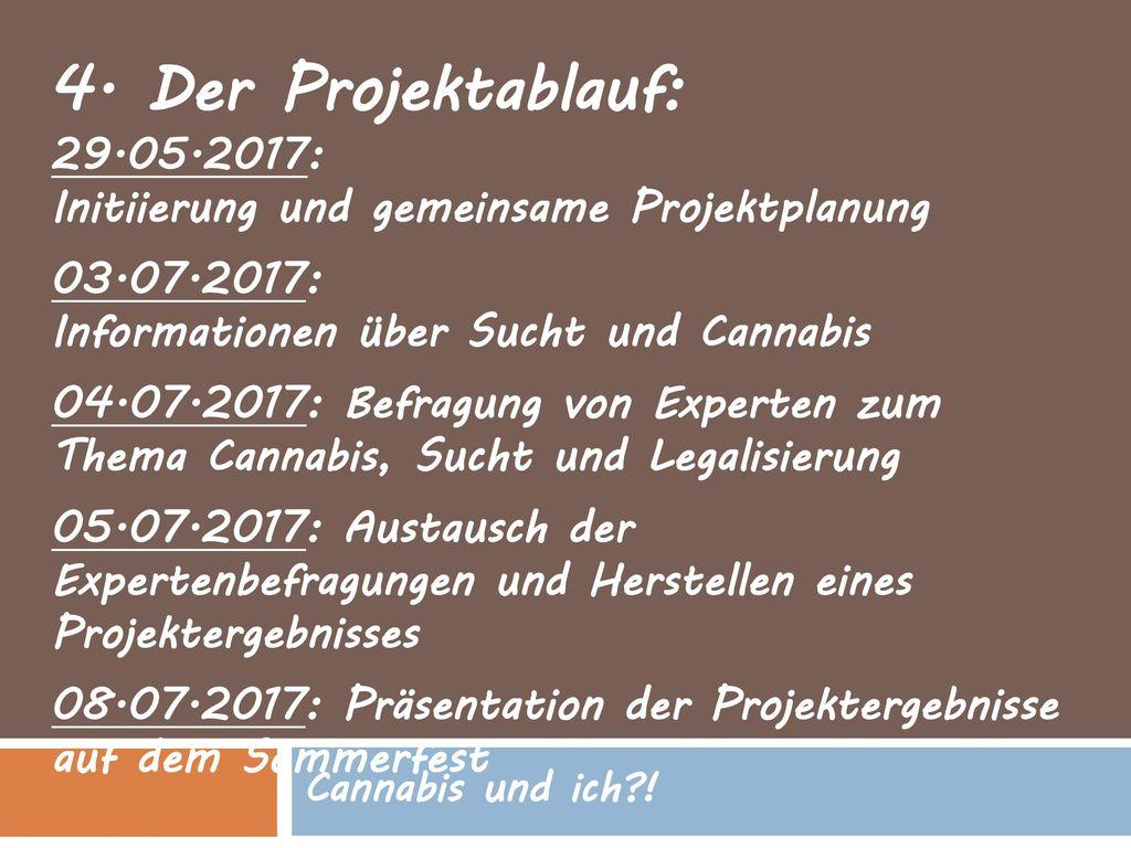 4. Der Projektablauf: 29.05.2017: Initiierung und gemeinsame Projektplanung. 03.07.2017: Informationen über Sucht und Cannabis.