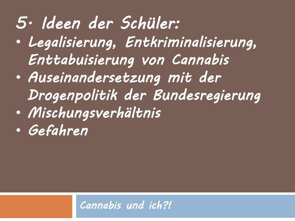 5. Ideen der Schüler: Legalisierung, Entkriminalisierung, Enttabuisierung von Cannabis. Auseinandersetzung mit der Drogenpolitik der Bundesregierung.