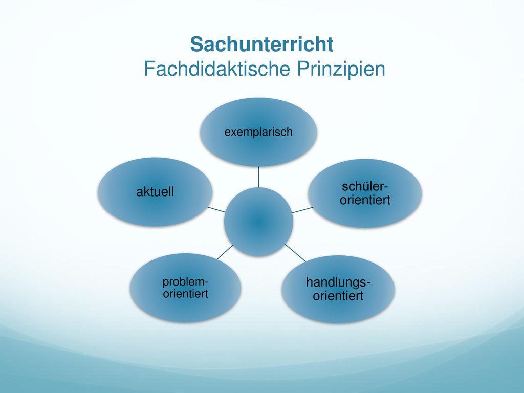 Sachunterricht Fachdidaktische Prinzipien