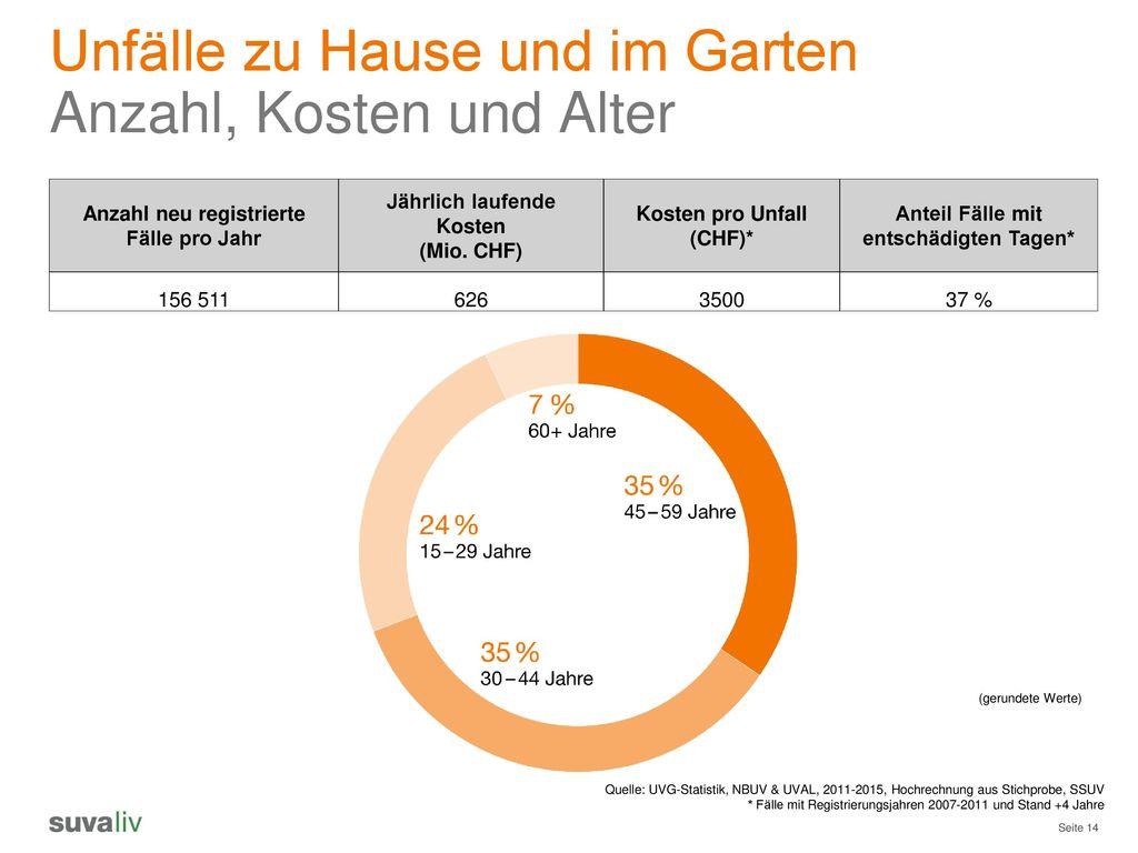 Unfälle zu Hause und im Garten Anzahl, Kosten und Alter