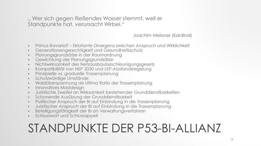 Standpunkte der P53-BI-Allianz