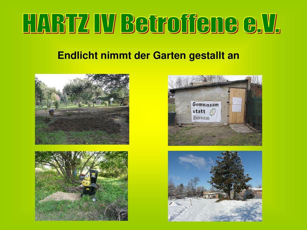 HARTZ IV Betroffene e.V. Endlicht nimmt der Garten gestallt an