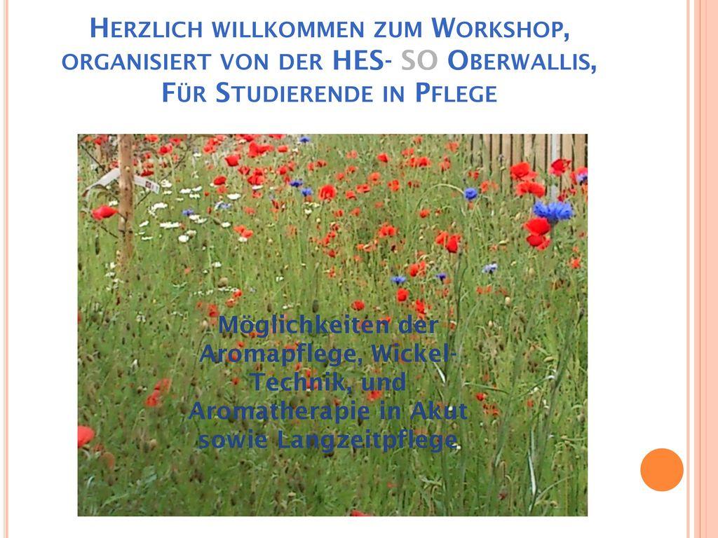 Herzlich willkommen zum Workshop, organisiert von der HES- SO Oberwallis, Für Studierende in Pflege
