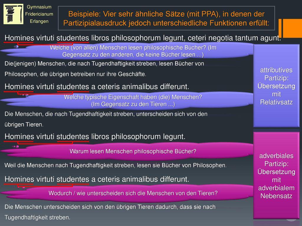 Homines virtuti studentes a ceteris animalibus differunt.