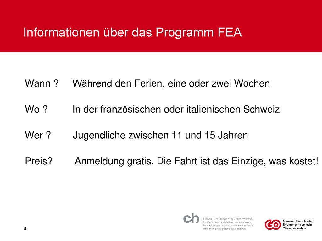 Informationen über das Programm FEA
