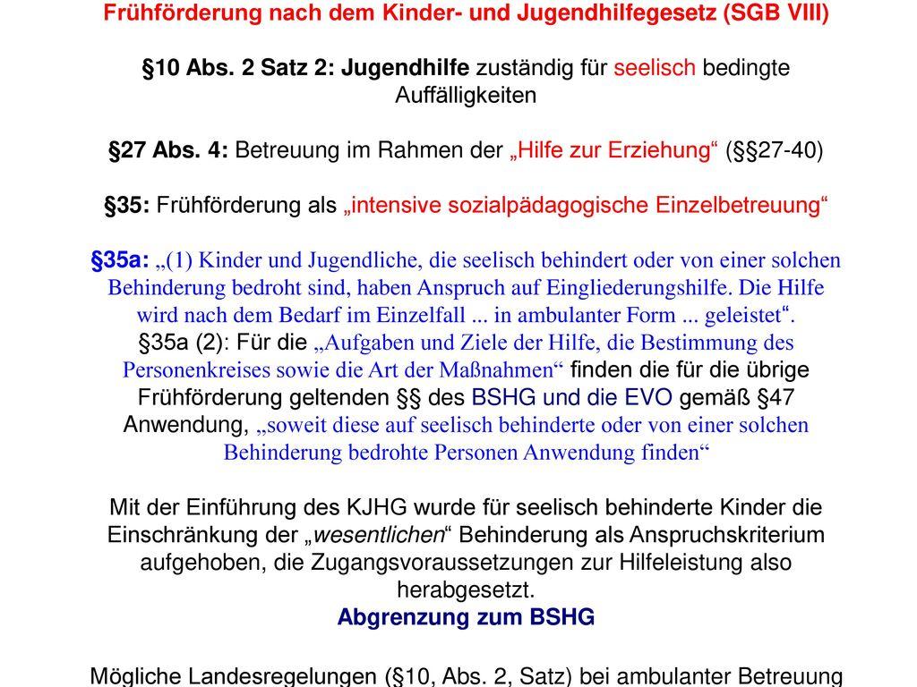 Frühförderung nach dem Kinder- und Jugendhilfegesetz (SGB VIII) §10 Abs.