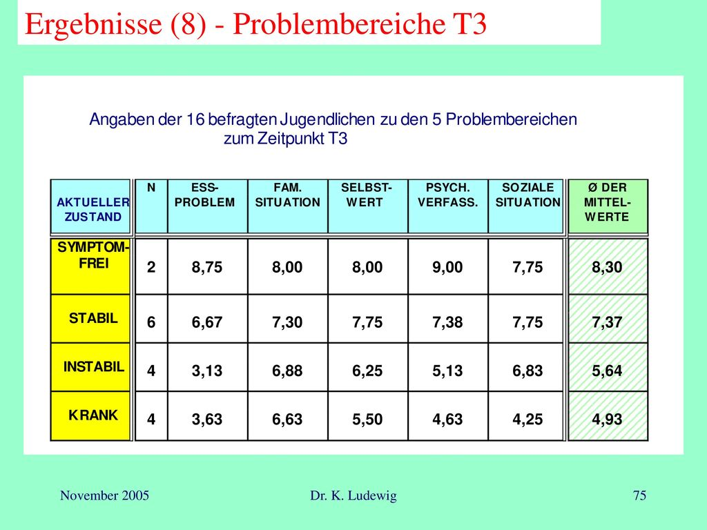 Ergebnisse (8) - Problembereiche T3