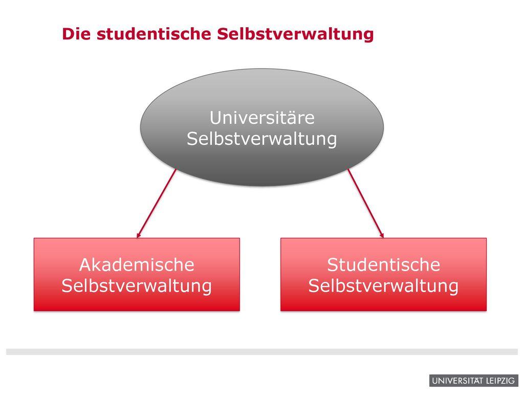 Die studentische Selbstverwaltung