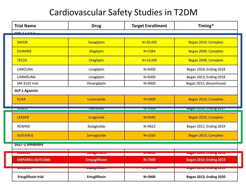 Cardiovascular Safety Studies in T2DM
