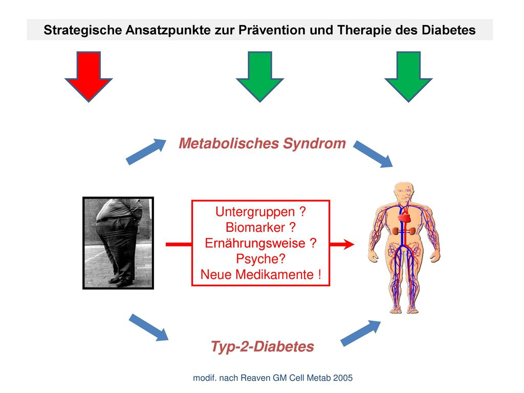 Metabolisches Syndrom Typ-2-Diabetes