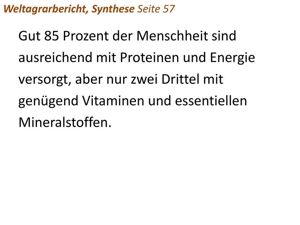 Weltagrarbericht, Synthese Seite 57