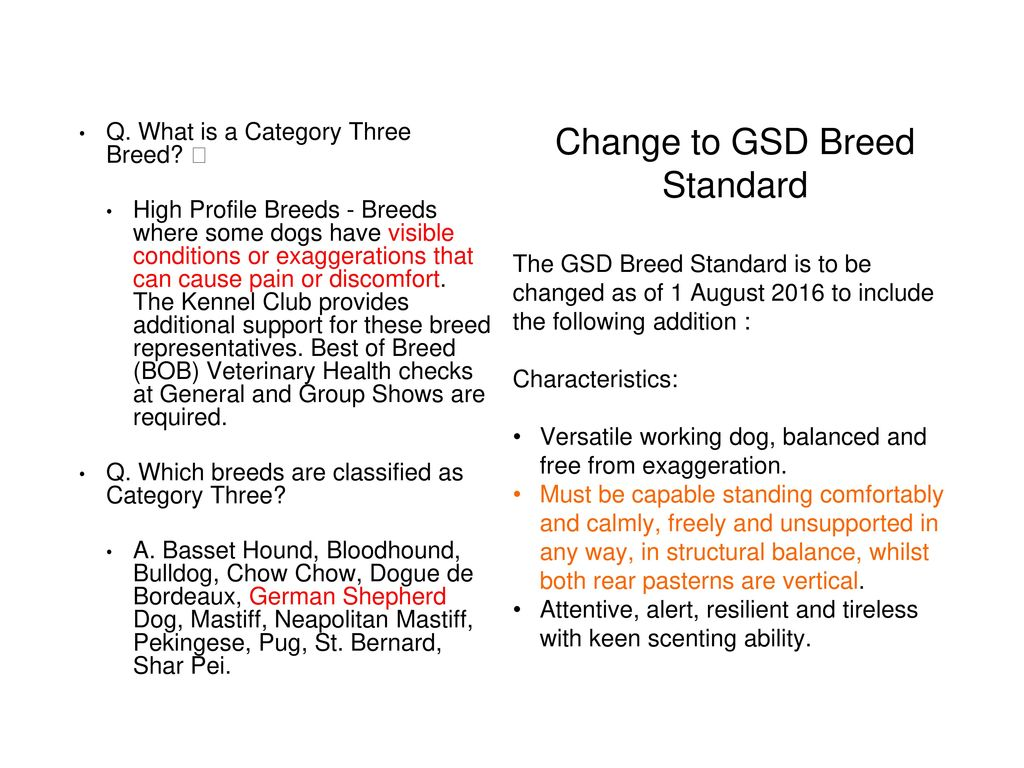 Change to GSD Breed Standard