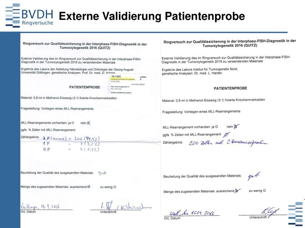 Externe Validierung Patientenprobe