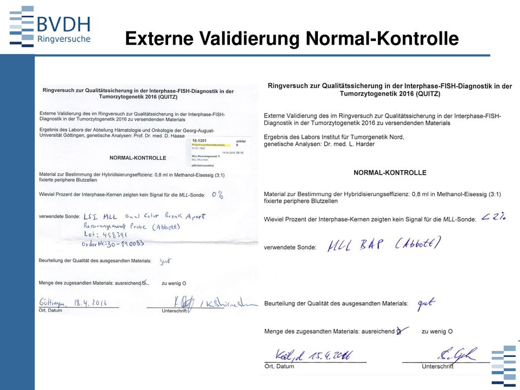 Externe Validierung Normal-Kontrolle
