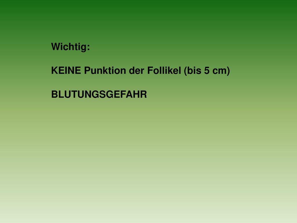 Wichtig: KEINE Punktion der Follikel (bis 5 cm) BLUTUNGSGEFAHR