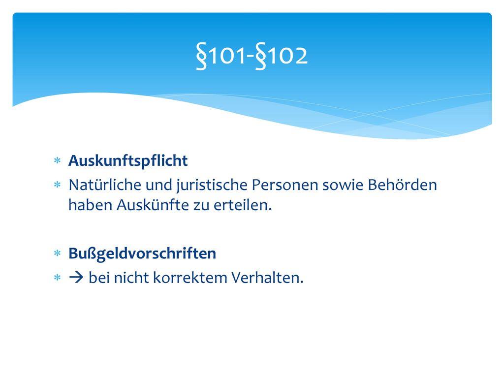 Ausschuss für Fragen behinderter Menschen §95