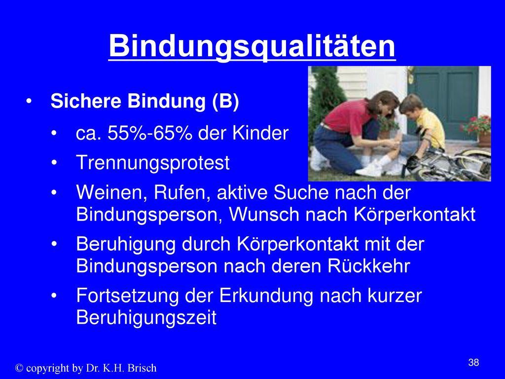 Bindungsqualitäten Sichere Bindung (B) ca. 55%-65% der Kinder