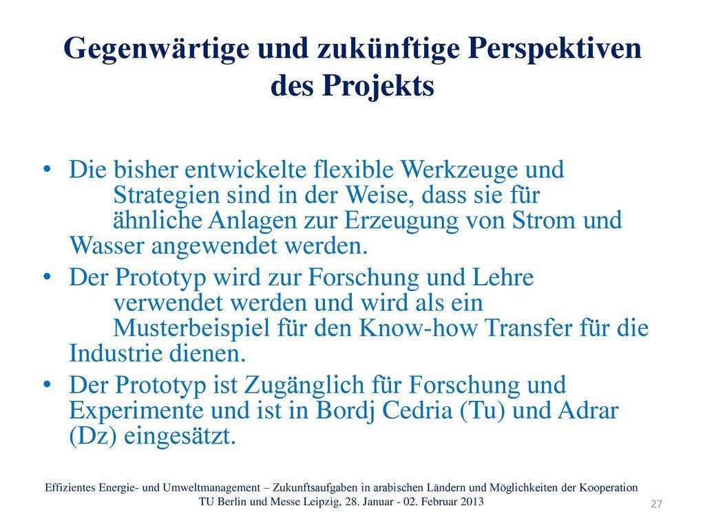 Gegenwärtige und zukünftige Perspektiven des Projekts