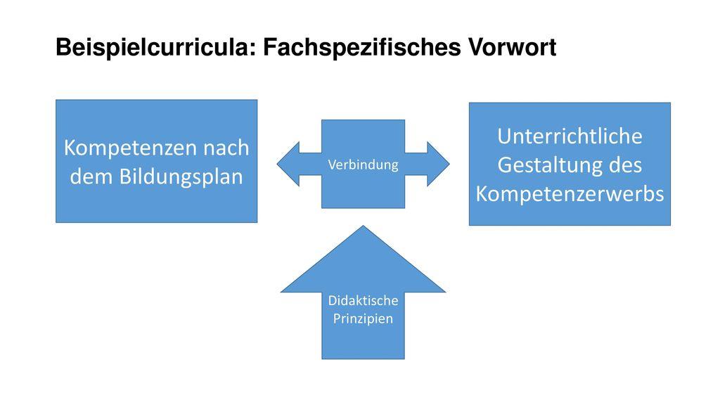 Beispielcurricula: Fachspezifisches Vorwort