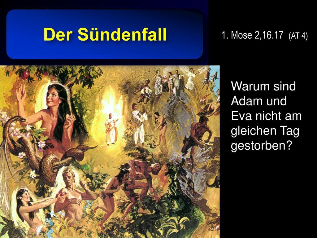 Der Sündenfall 1. Mose 2,16.17 (AT 4) Warum sind Adam und Eva nicht am gleichen Tag gestorben.