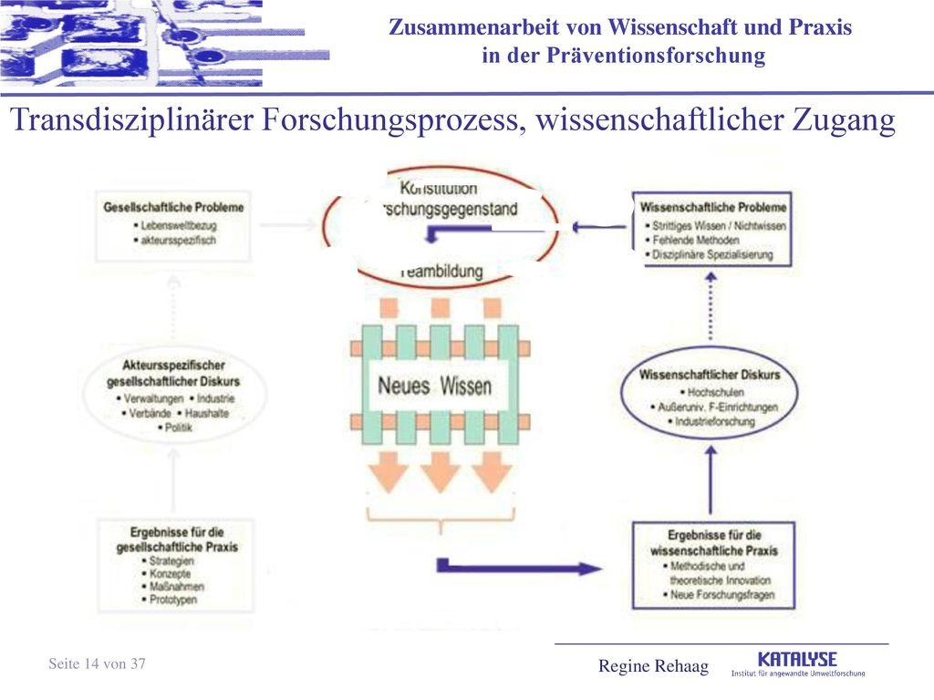 Transdisziplinärer Forschungsprozess, wissenschaftlicher Zugang