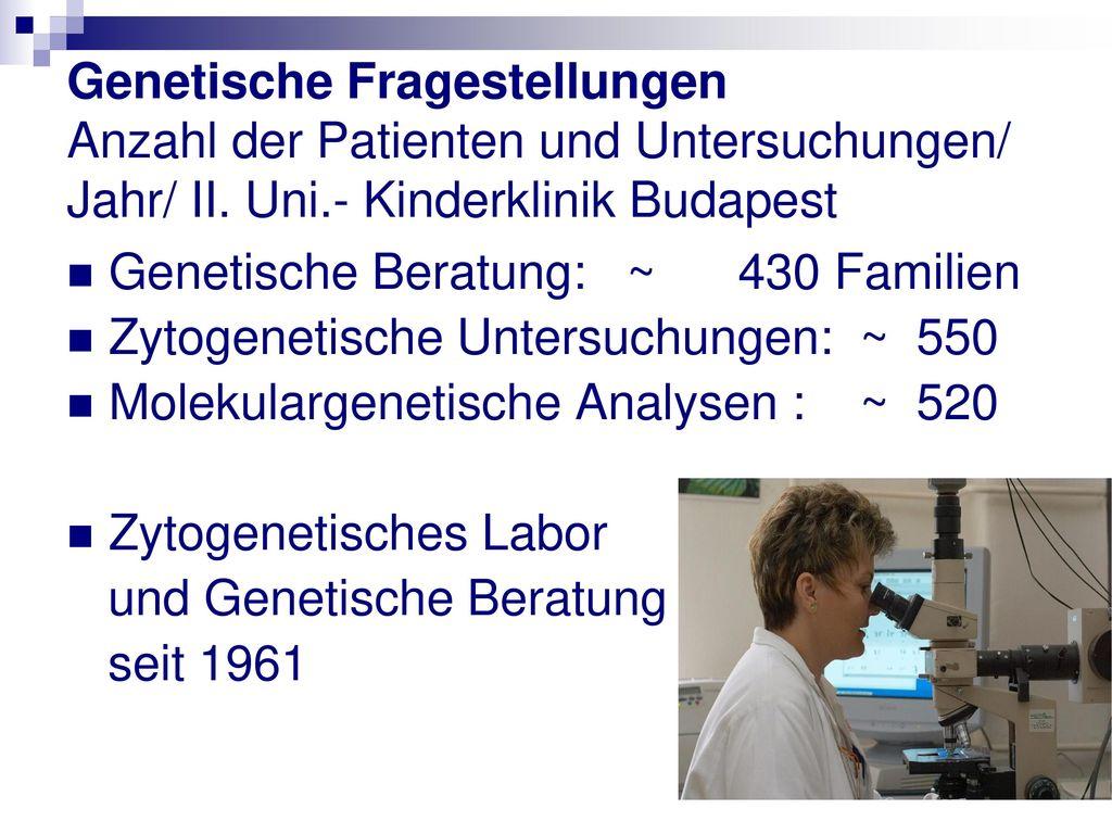 Genetische Fragestellungen Anzahl der Patienten und Untersuchungen/ Jahr/ II. Uni.- Kinderklinik Budapest