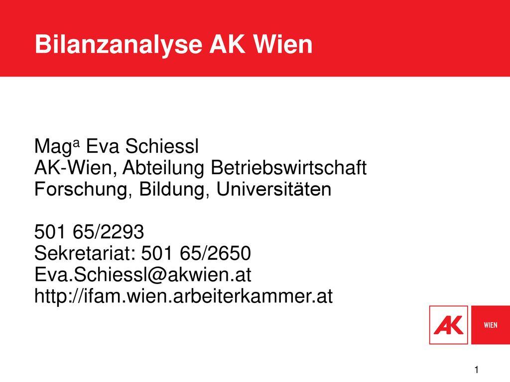 Bilanzanalyse AK Wien Maga Eva Schiessl