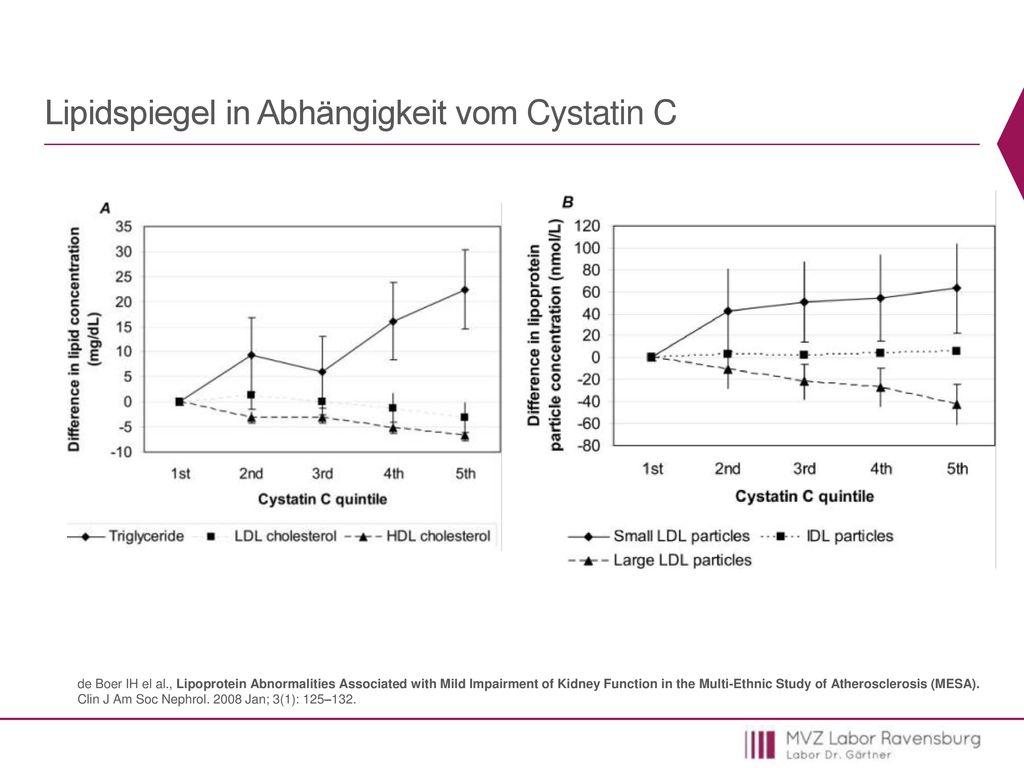 Lipidspiegel in Abhängigkeit vom Cystatin C