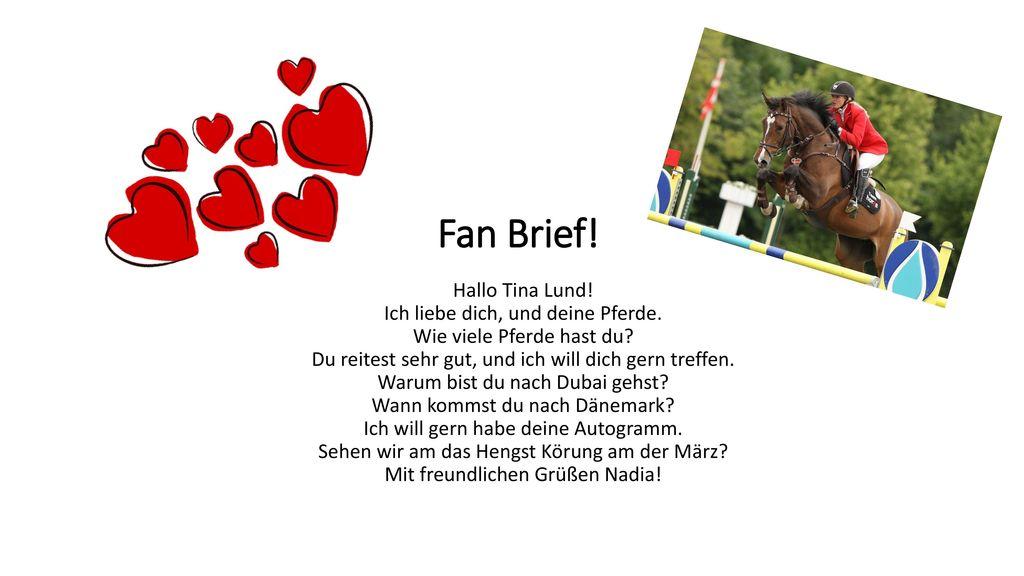 Fan Brief!