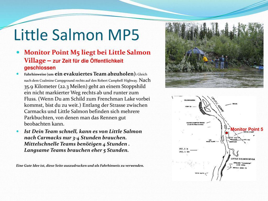 Little Salmon MP5 Monitor Point M5 liegt bei Little Salmon Village – zur Zeit für die Öffentlichkeit geschlossen.
