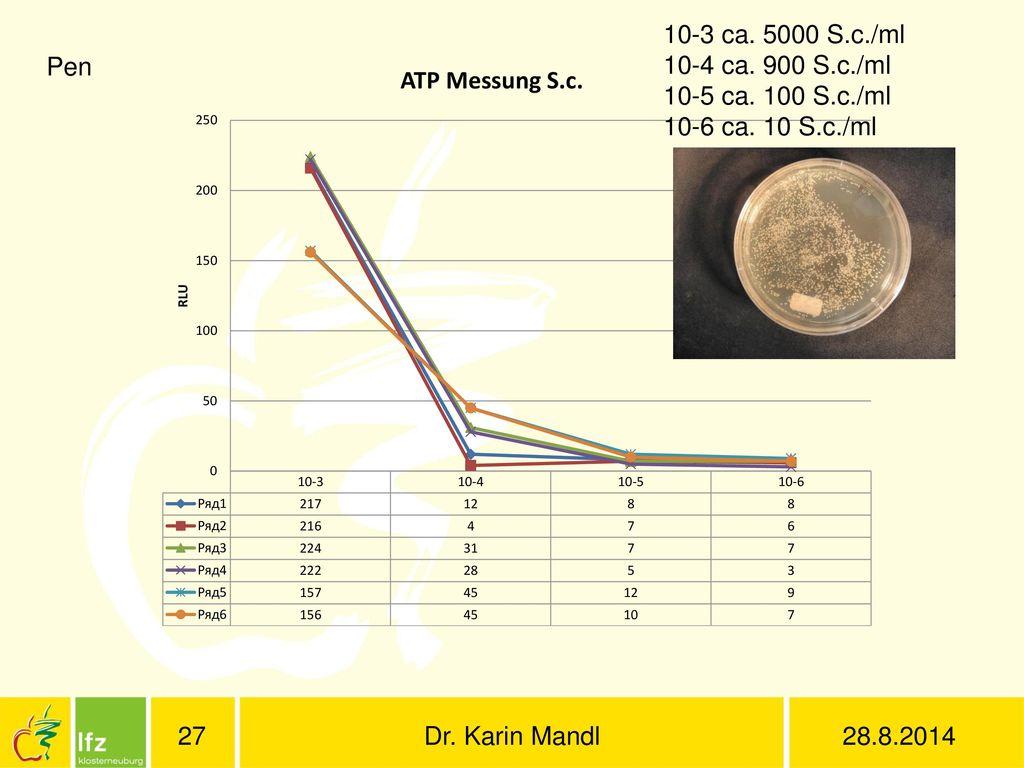 10-3 ca. 5000 S.c./ml 10-4 ca. 900 S.c./ml. 10-5 ca. 100 S.c./ml. 10-6 ca. 10 S.c./ml. Pen. Dr. Karin Mandl.