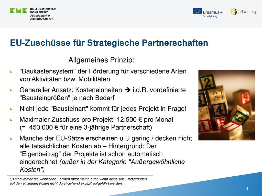 EU-Zuschüsse für Strategische Partnerschaften