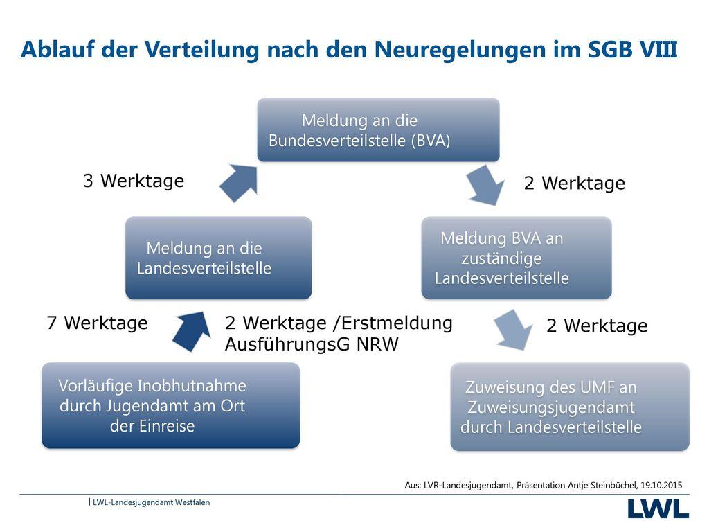 Ablauf der Verteilung nach den Neuregelungen im SGB VIII