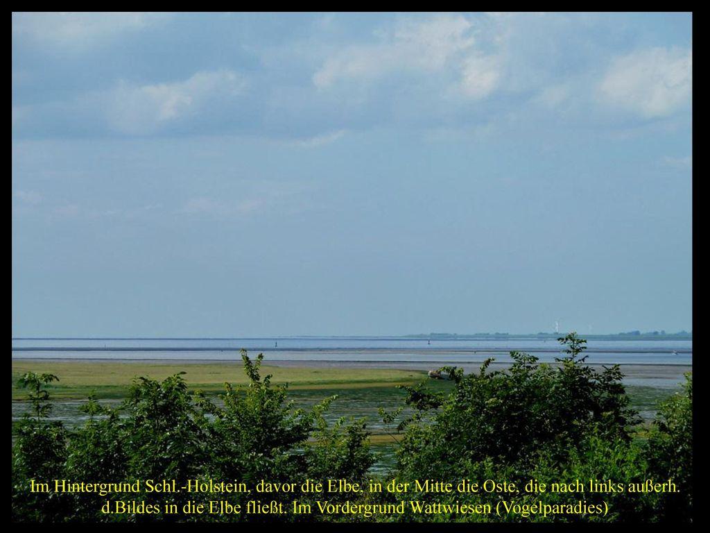 d.Bildes in die Elbe fließt. Im Vordergrund Wattwiesen (Vogelparadies)