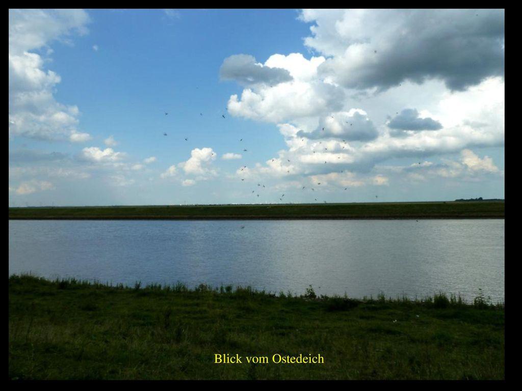Blick vom Ostedeich