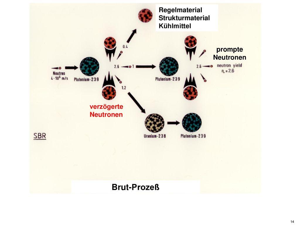 Brut-Prozeß Regelmaterial Strukturmaterial Kühlmittel prompte
