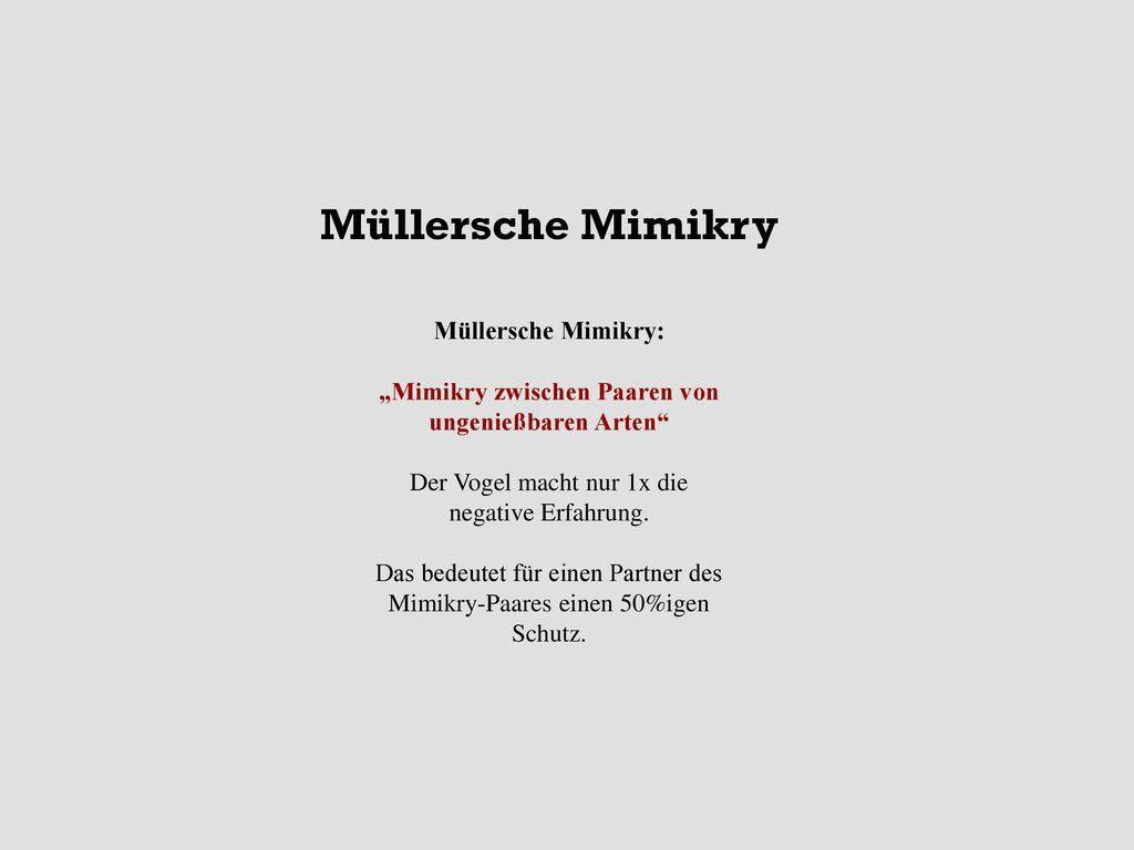 """""""Mimikry zwischen Paaren von ungenießbaren Arten"""