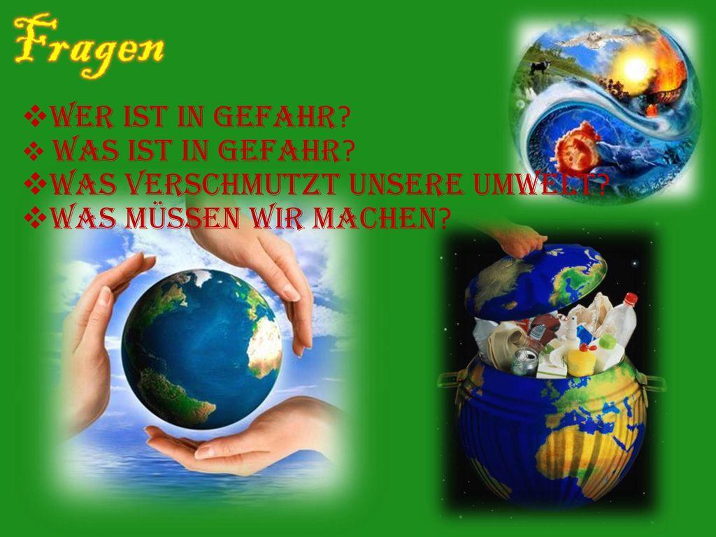 Fragen Wer ist in Gefahr Was verschmutzt unsere Umwelt