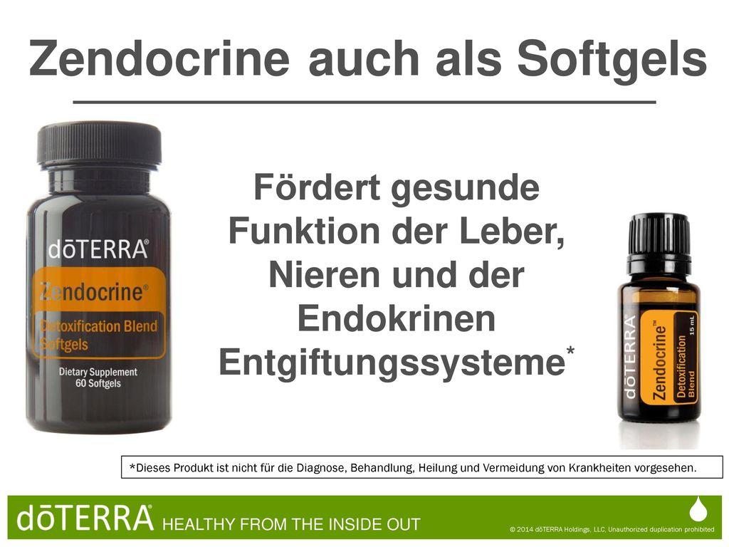 Fein Funktion Der Leber Und Die Nieren Galerie - Menschliche ...