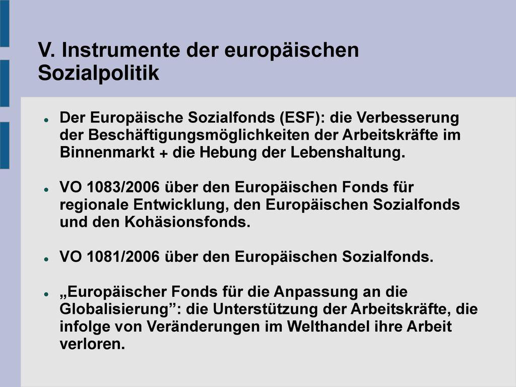 V. Instrumente der europäischen Sozialpolitik