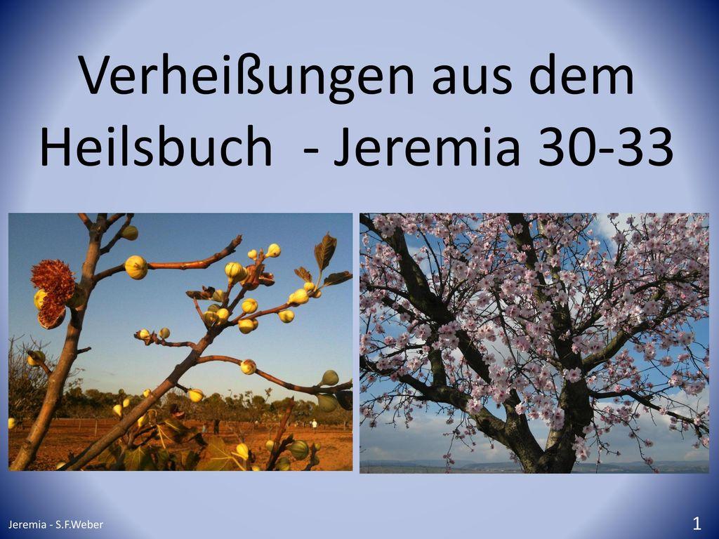 Verheißungen aus dem Heilsbuch - Jeremia 30-33