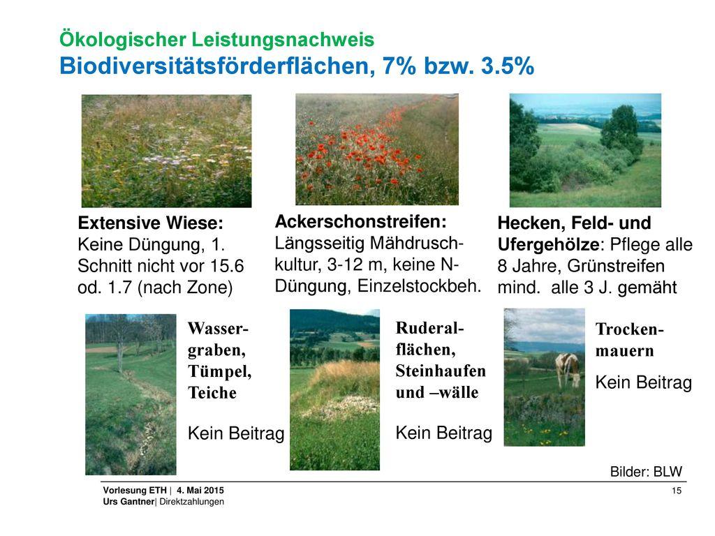 Ökologischer Leistungsnachweis. Biodiversitätsförderflächen, 7% bzw. 3