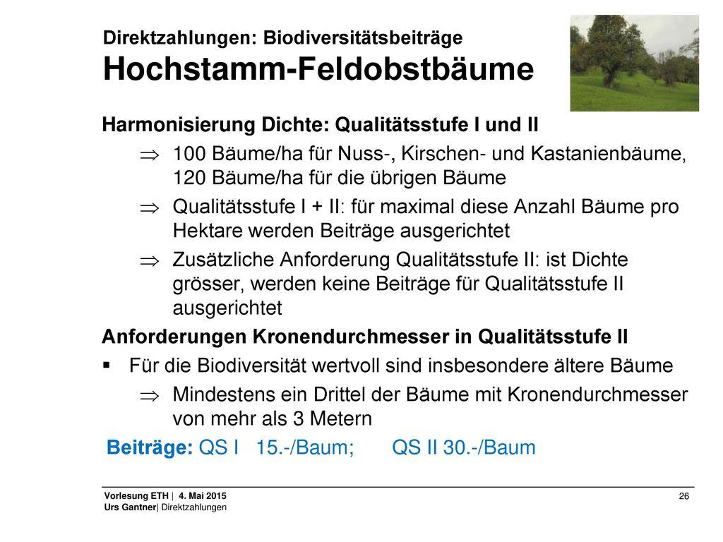 Direktzahlungen: Biodiversitätsbeiträge Hochstamm-Feldobstbäume