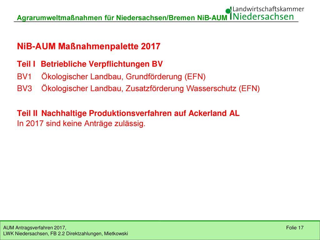 NiB-AUM Maßnahmenpalette 2017