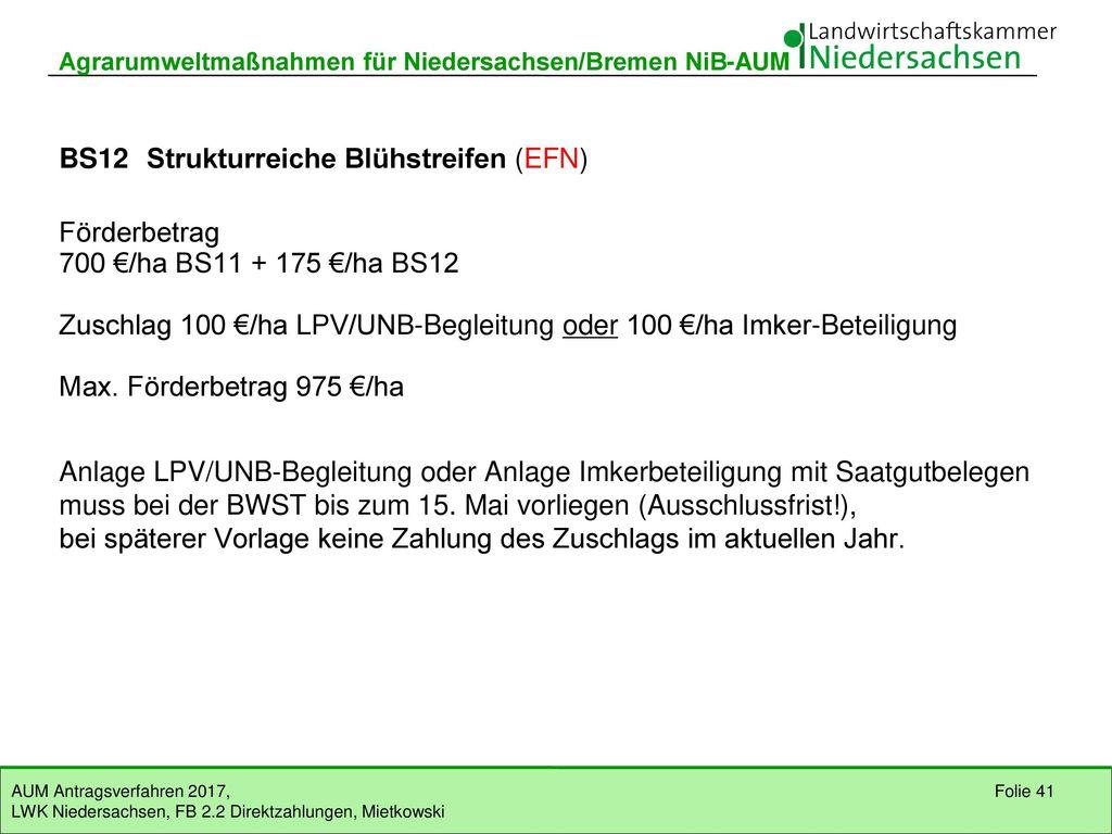 BS12 Strukturreiche Blühstreifen (EFN)